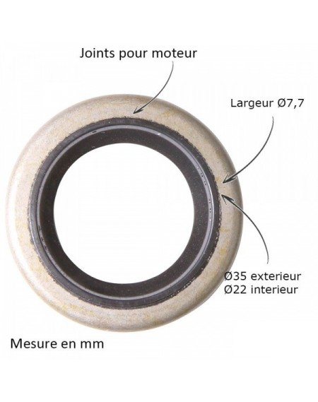 Joint spi pour B&S 391483-291841
