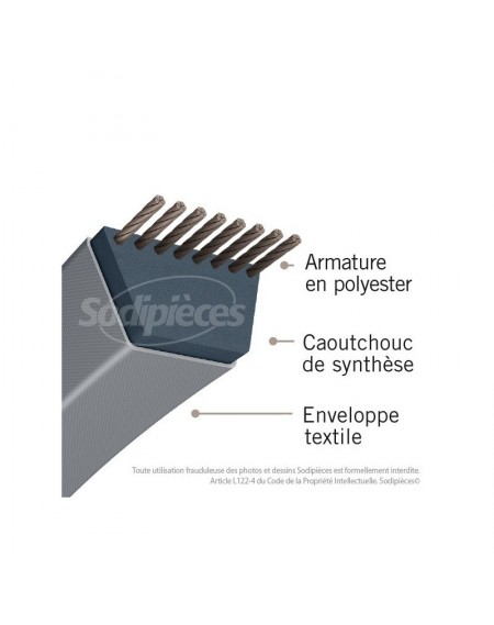 TAILLE HAIE ACTIVE